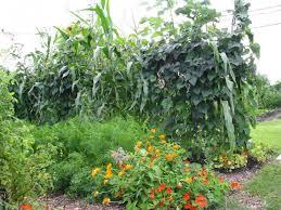 Diverse French Garden