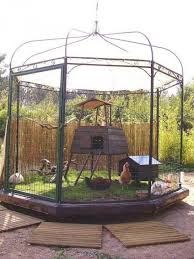 Gazebo for Backyard Chickens