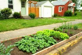 Urban Garden Parking Strip