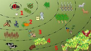 Apply Permaculture Principles