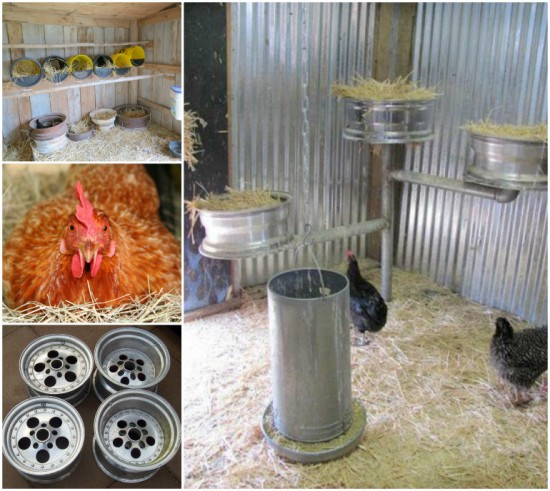Chicken Nesting Boxes Wheel Rims