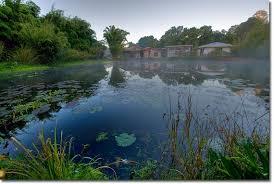 Geoff Lawton Zaytuna Pond