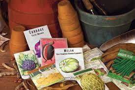 Organic Vegetable Seeds Online