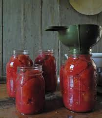 Canning Funnel Tomatoes