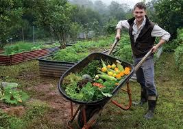 Get a good Harvest!