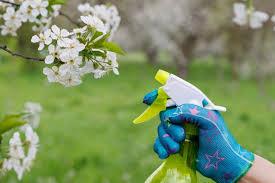 Grow Organic with Homemade Pesticide