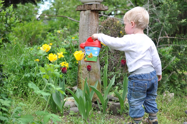 Starting a Garden with Kids