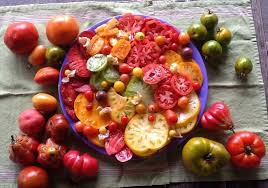 Variety of Delicious Tomatoes
